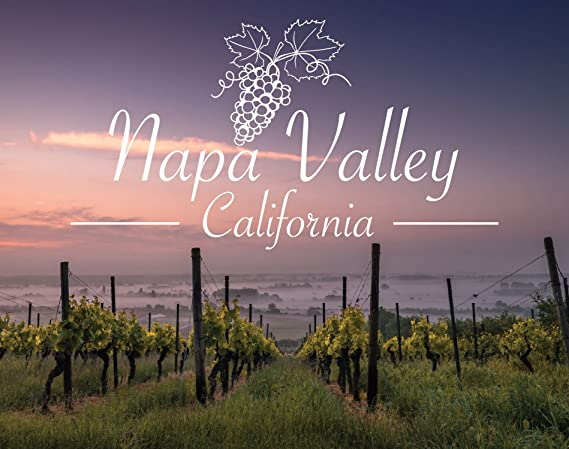 R and R Imports Napa Valley California Souvenir Wine Country Sonoma Grapes 5x6 Inch Rectangle Magnet Single