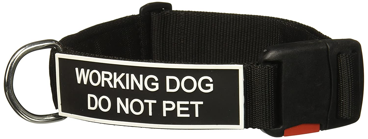 Dean and Tyler Patch Collar , Nylon Dog Collar with Working Dog DO NOT PET Patches Black Size  Large Fits Neck 26-Inch to 37-Inch