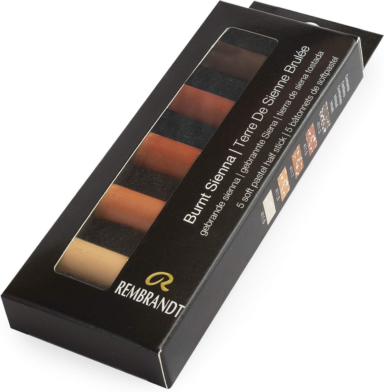 Tama/ño medio Royal Talens Rembrandt Soft Pastels Sienna quemada 5 colores surtidos