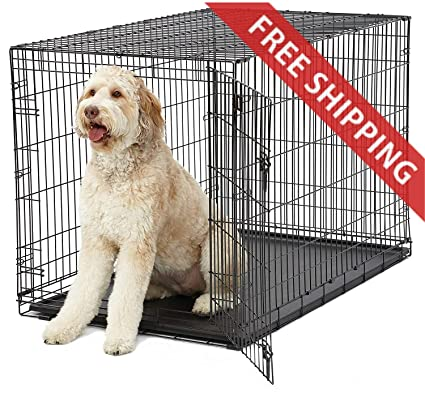 Amazoncom Rv Dog Crate 48l X 30w X 33h Inches Metal Folding For