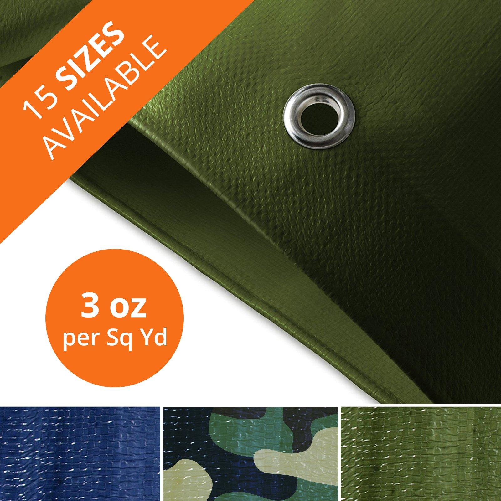 casa pura Tarp | Light Duty Waterproof Tarpaulin | Ultralight Canvas Drop Cover for Handy Application | Multiple Sizes - 0.2'' Thick | 3oz | Blue & Green - 10' x 12'