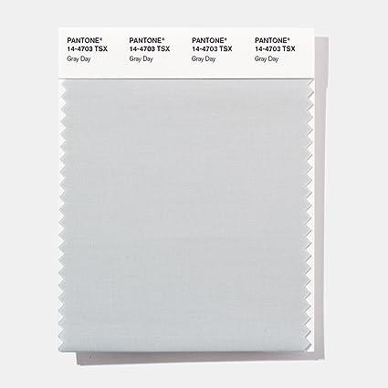 Amazon.com: PANTONE 14-4703 TSX - Tarjeta de poliéster para ...