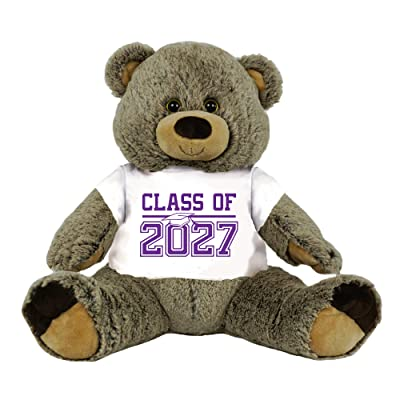 """5th Grade Class of 2027 Graduation Personalized 16"""" Teddy Bear Choose School Colors Personalized Name Elementary School Graduates Custom Gift: Baby"""