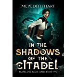 In The Shadows of The Citadel (Flame and Blade Book 2)