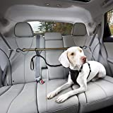 Kurgo Direct to seat belt Tether for Dogs, Car seat belt for Pets, Adjustable Dog Safety Belt Leash, Quick & Easy Installatio