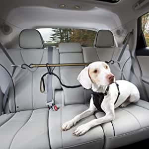 Kurgo Direct to Seatbelt Tether for Dogs | Car Seat Belt for Pets | Adjustable Dog Safety Belt Leash | Quick & Easy Installation | Works with Any Pet Harness | Carabiner | Swivel | Bungee | Zipline