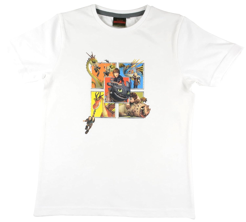 Dragons Bambini T Shirt della DreamWorks Drago Cavaliere Amici