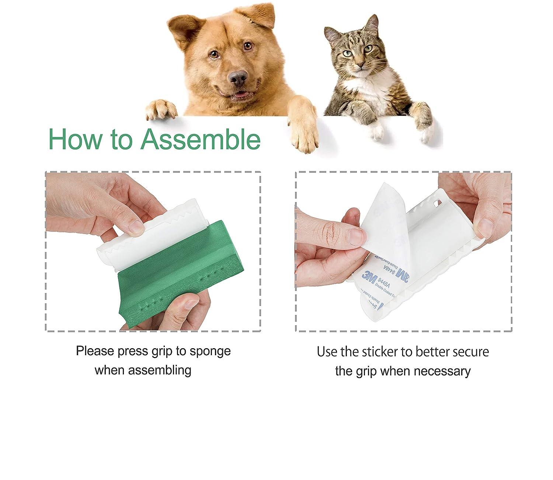 Amazon.com: Mora Pets Pet - Eliminador de pelo para perros ...