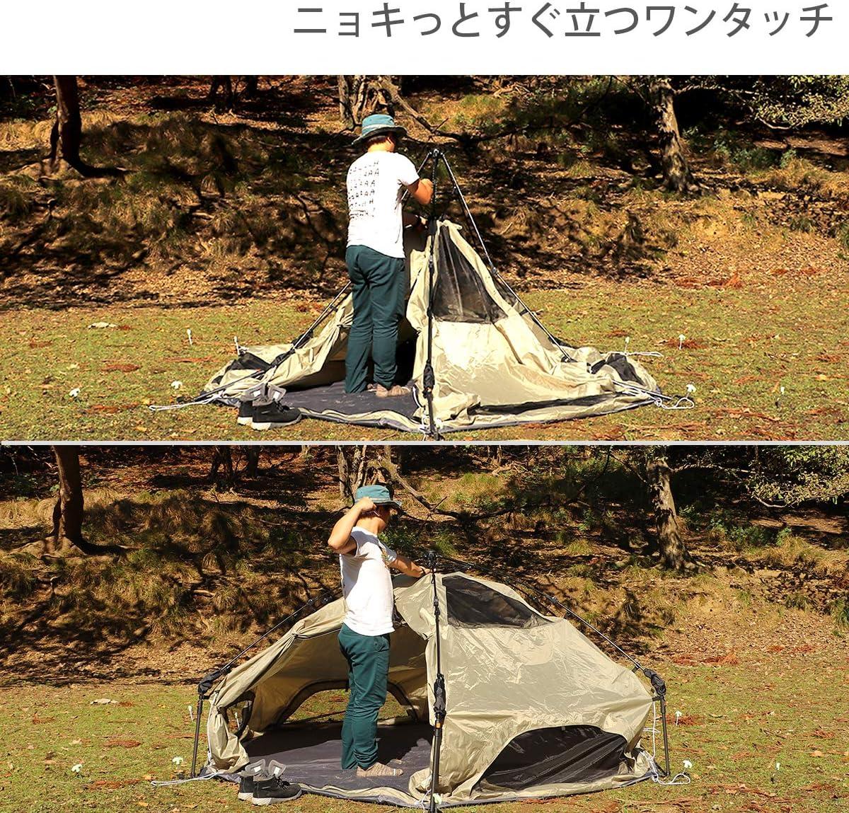 テント キノコ