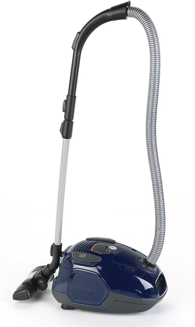 Theo Klein-6870 101/102 Dalmatiner Electrolux aspiradora, juguete, Multicolor (6870): Amazon.es: Juguetes y juegos