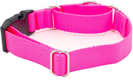 1 Reflective Tag Collar Buckle Style for SighthoundsDogs