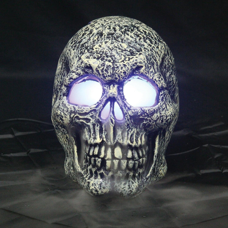 amazoncom seasons skull mister decoration toys games