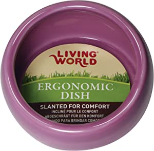 Living World Ergonomic Food Dish, for Small Animals, Pink, Large, 14.78 oz, 61685