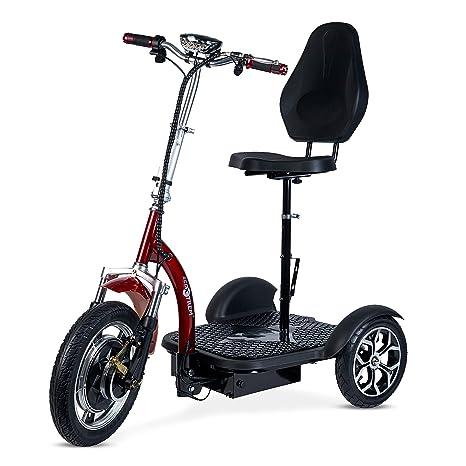 ECOXTREM Triciclo eléctrico para Movilidad recudida con ...