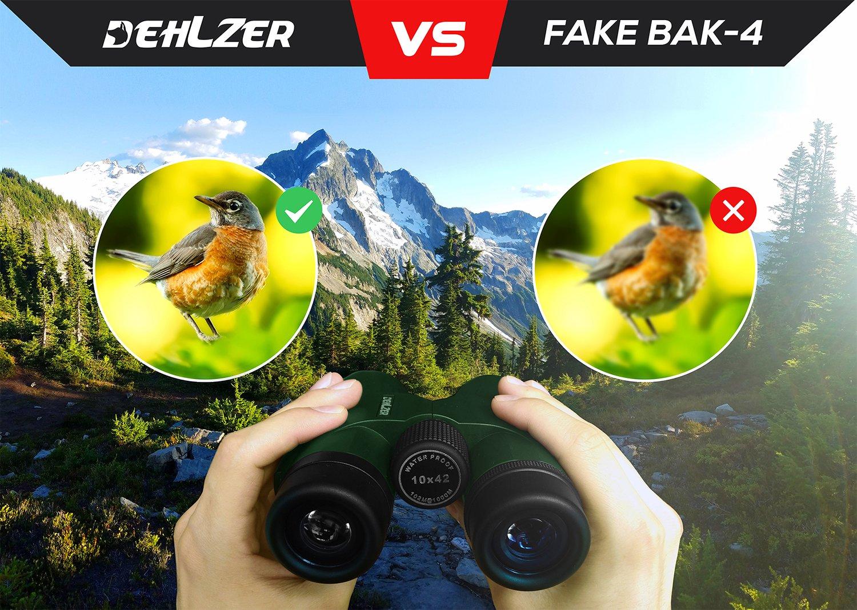 Fernglas 10x42 für vogelbeobachtung jagd safari: amazon.de: kamera