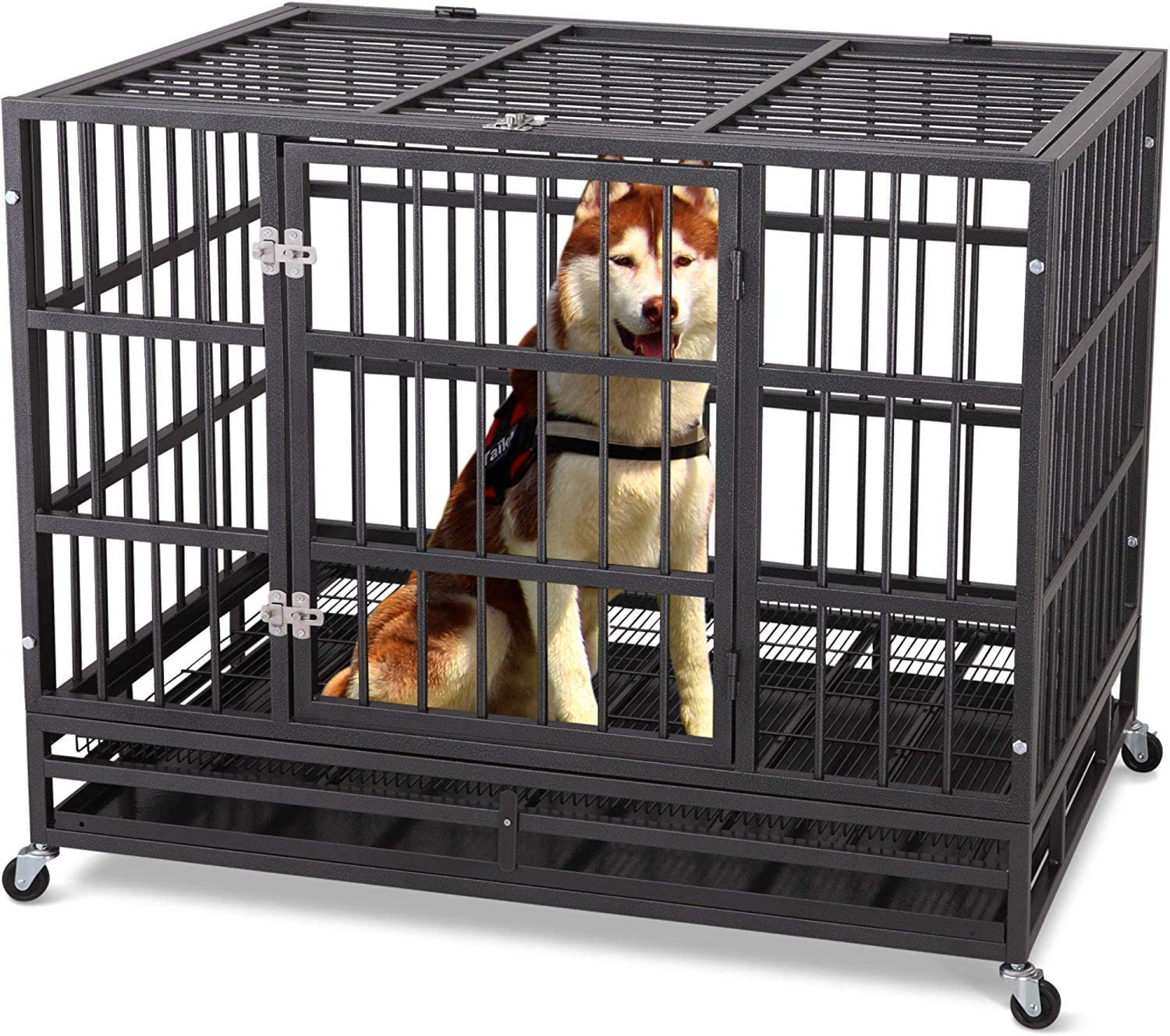 Tray and Rolling Wheels Two Lock ITORI Heavy Duty Dog Cage-Strong Folding Metal Crate Kennel and Playpen for Medium and Large Dogs with Double Door 36 42 48