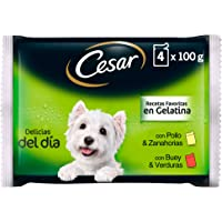 Cesar Comida Húmeda para Perro, Selección Carnes Mixtas en Gelatina, Multipack (13 packs x 4 bolsitas x 100g)