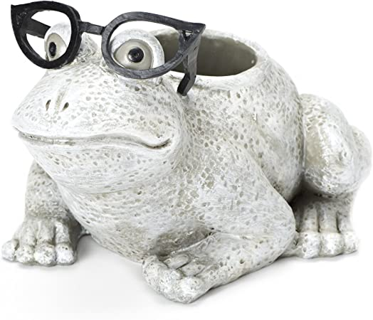 6-Inch Roman Exclusive White Frog Wearing Silly Black Spectacles Planter Made