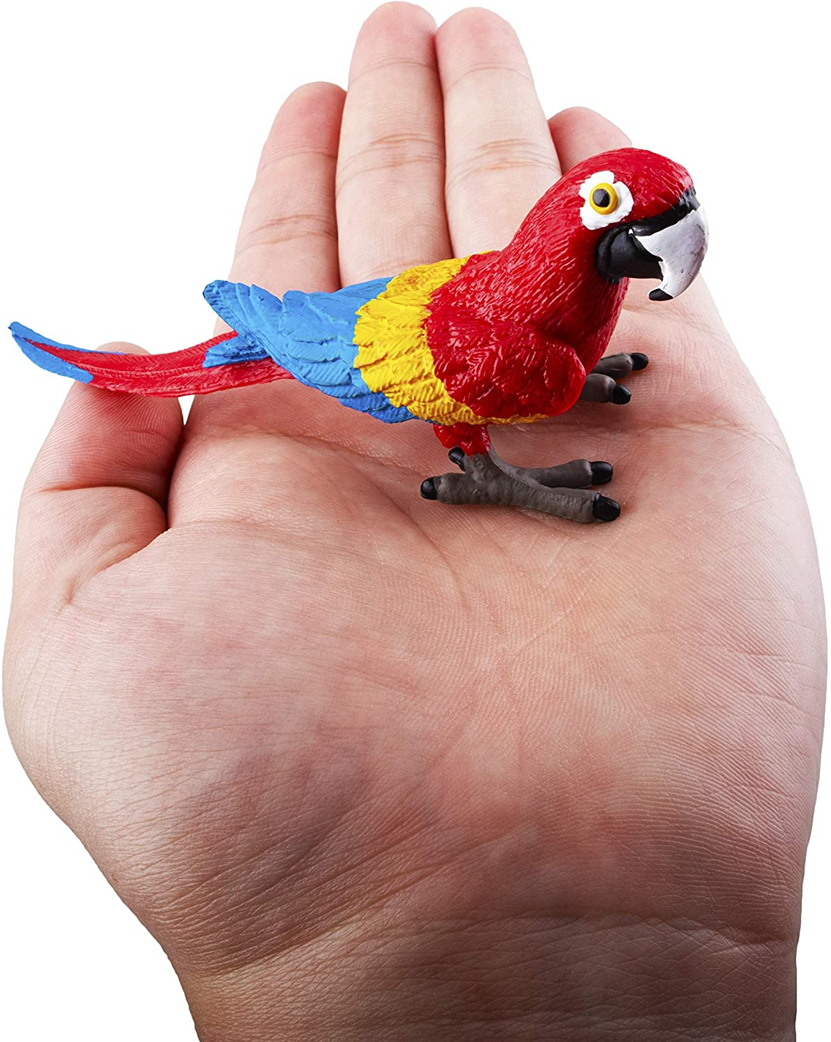 Educational Toy Cake Toppers Christmas Birthday Gift for Kids Toddlers TOYMANY 9PCS Realistic Parrot Birds Figurines 2-4 Plastic Macaw Animals Figures Set Includes Cockatoo,Scarlet Macaw
