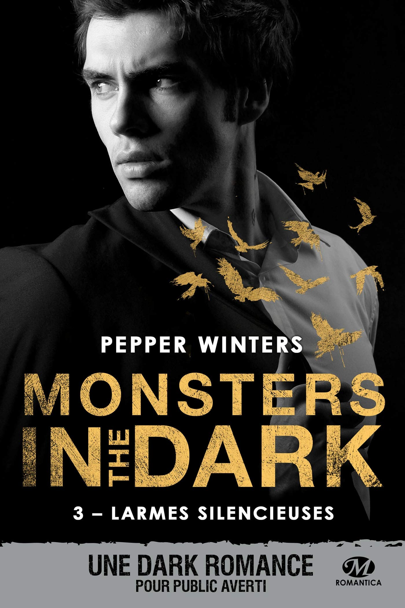 Amazon.fr - Monsters in the dark, T3 : Larmes silencieuses ...