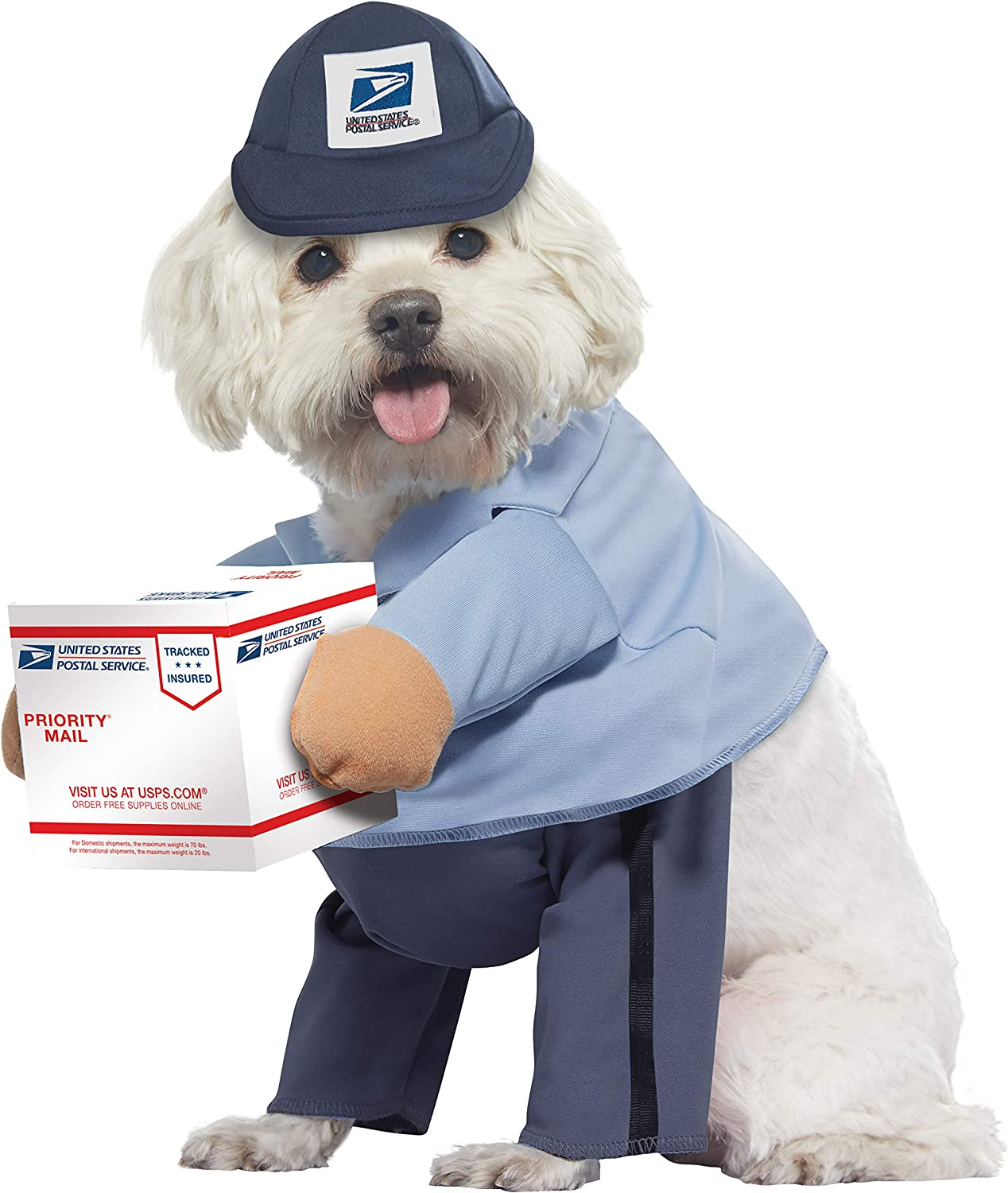 Blue_US Mail Carrier PUP
