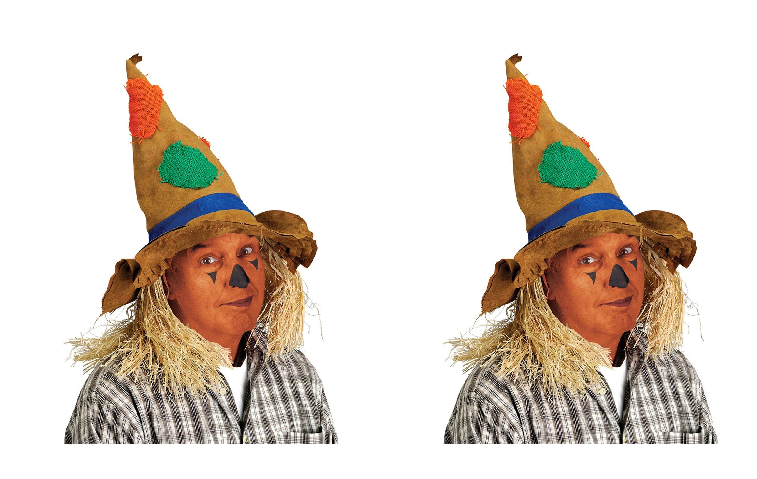 Beistle S90731AZ2 Scarecrow Hat, Multicolored