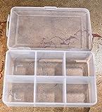 Crispy Deals Plastic 6 Compartment Compact Multipurpose Storage Box for Storing Various Items(Transparent, 27x17x6cm)