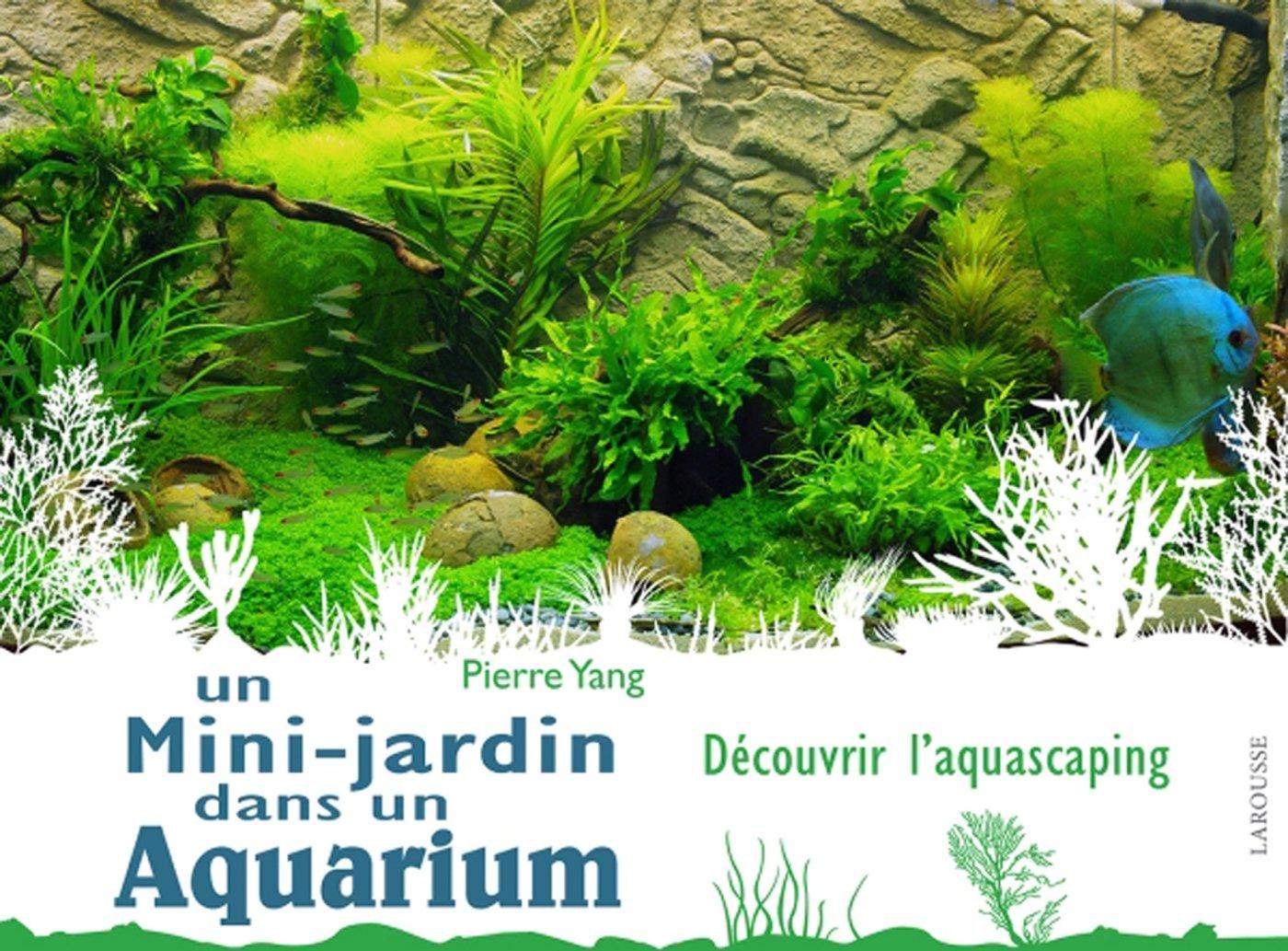 Un mini jardin dans un aquarium: Amazon.fr: Pierre Yang: Livres