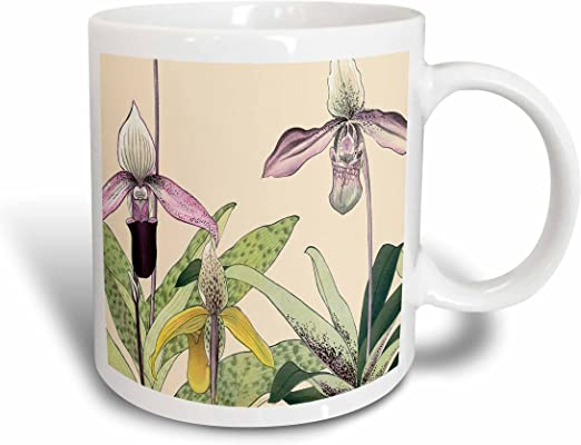 Red 11 oz 3dRose 175433/_5 Pink and Yellow Cypripedium Lady Slipper Orchids Two Tone Mug