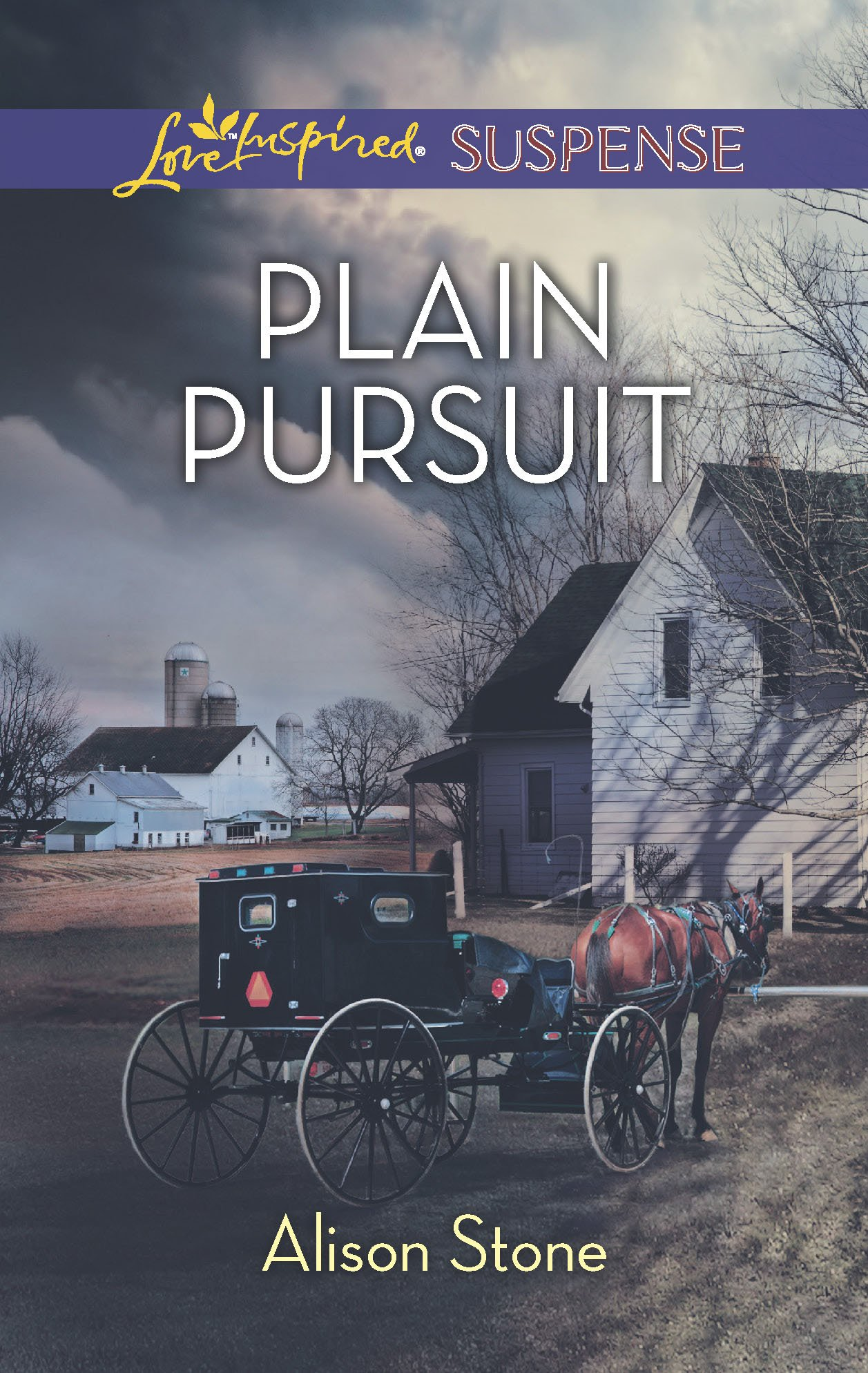 Plain Pursuit (Love Inspired Suspense) by Love Inspired Suspense