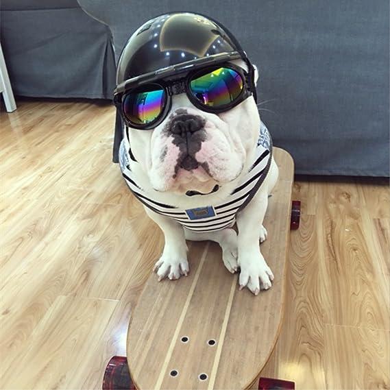 Sombreros,MyTop Casco de Moto Para Perros Plá Stico ABS: Amazon.es: Productos para mascotas