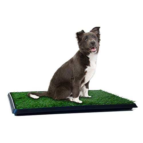 Pet Makers' PAW Puppy Potty Trainer