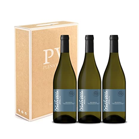 Vino blanco albariño Rias Baixas 100%. Albariño Gallego pack estuche 3 botellas 75cl.