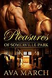 Pleasures of Somerville Park