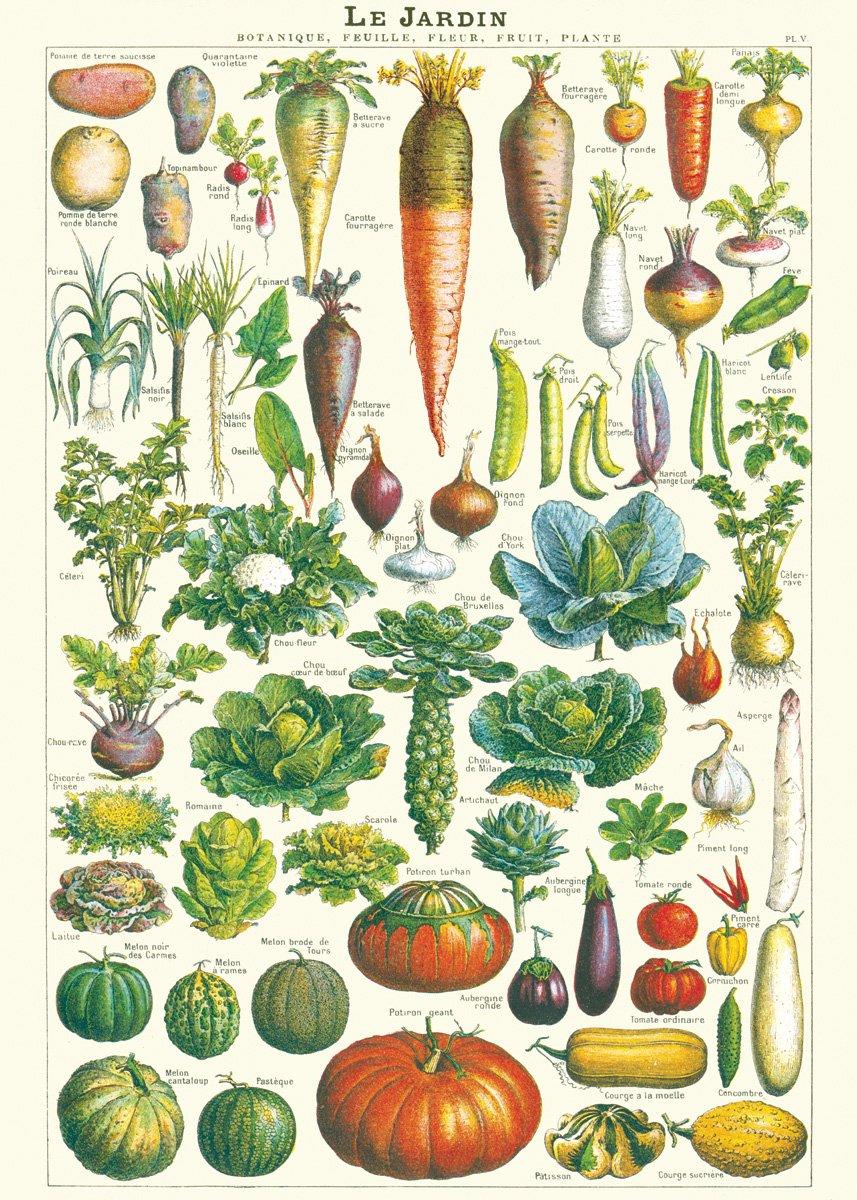 Cavallini & Co. Le Jardin Decorative Paper Sheet 20