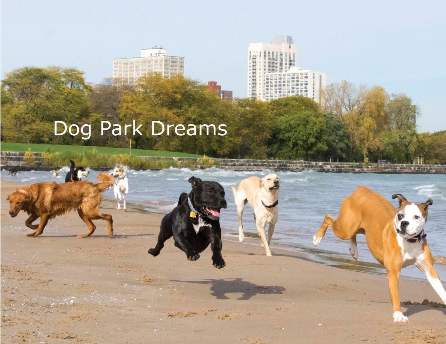 Dog Park Dreams: An Off-Leash Adventure PDF ePub book