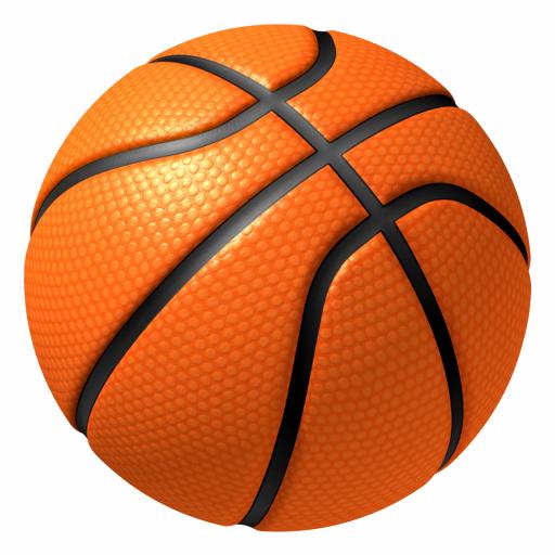 Slam Dunks Basketball