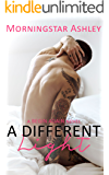 A Different Light (A Begin Again Novel Book 1)