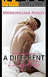 A Different Light (A Begin Again Novel Book 1)
