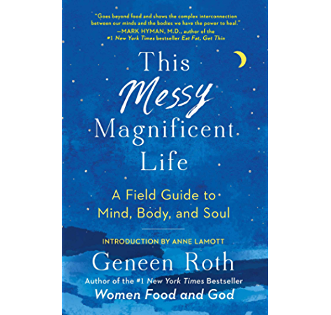 This Messy Magnificent Life A Field Guide Kindle Edition By Roth Geneen Lamott Anne Religion Spirituality Kindle Ebooks Amazon Com