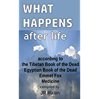 What Happens After Life?: according to the Tibetan Book of the Dead, Egyptian Book of the Dead, Emmet Fox and Medicine