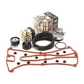 02 - 04 Ford Focus Svt 2.0 Dohc 16 V Zetec Vin 5 Kit de Correa dentada GMB Bomba de agua tapa de la válvula de la culata: Amazon.es: Coche y moto