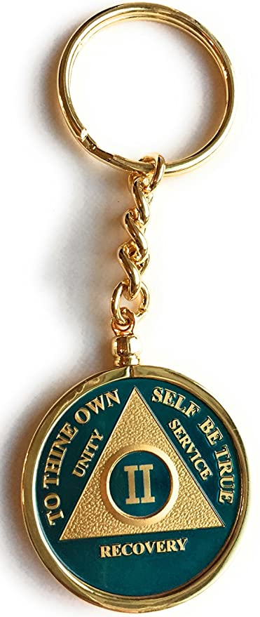 9cfcbfa06a9 Amazon.com   2 Year Blue Gold Plated AA Medallion In Keychain Removable  Sobriety Chip Holder   Office Products
