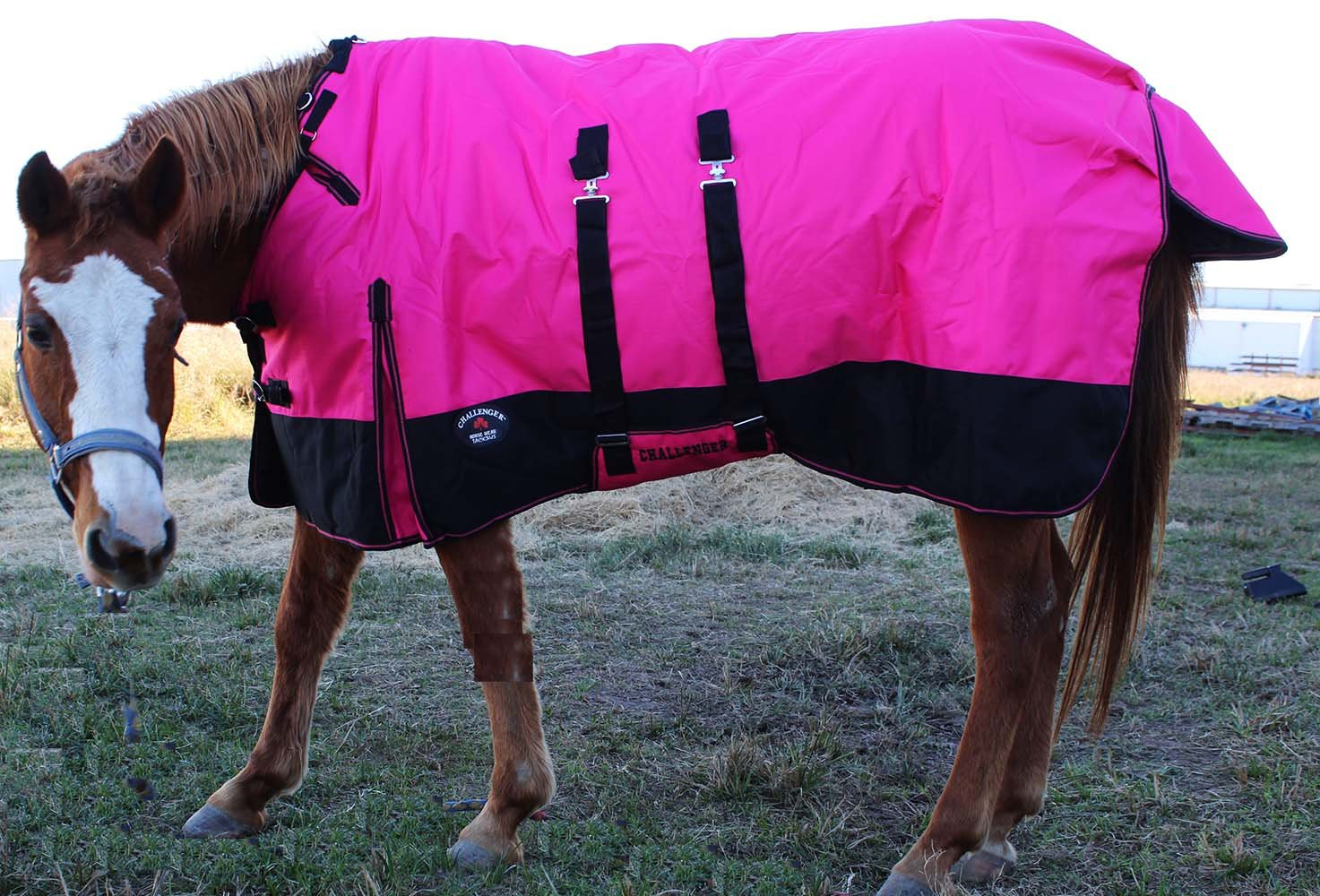 CHALLENGER 78'' 1200D Turnout Waterproof Horse Winter Blanket Heavy Belly Band 573B