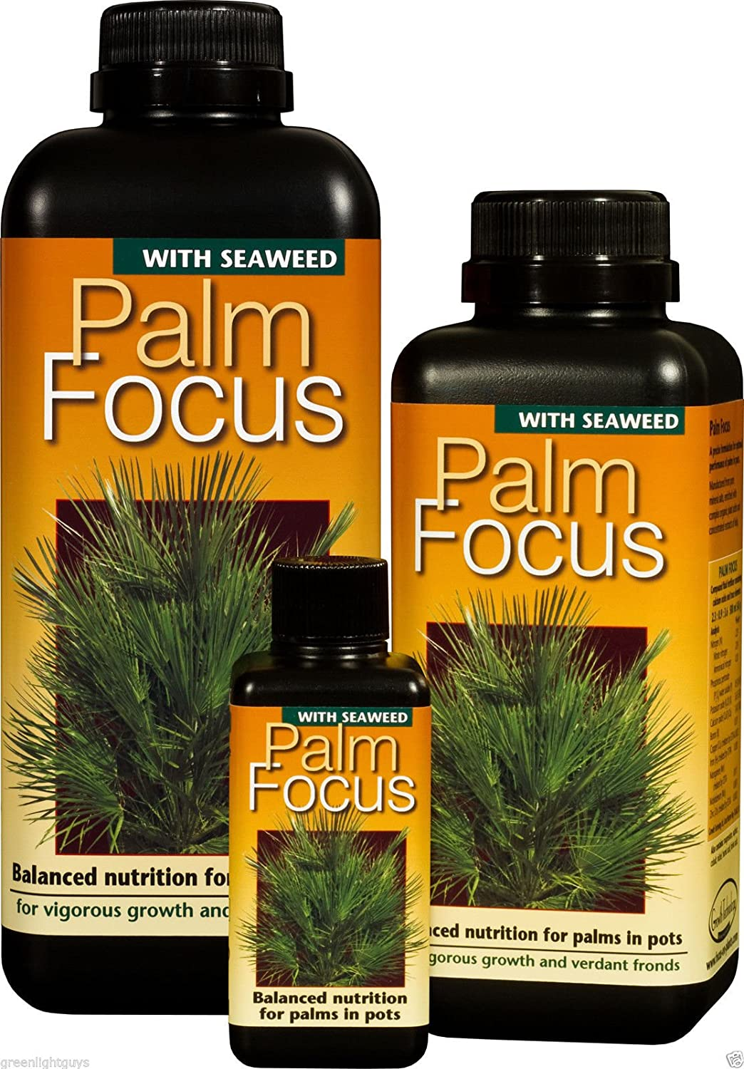 palm focus 100ml FREE PIPPET GROWTH TECHNOLOGY