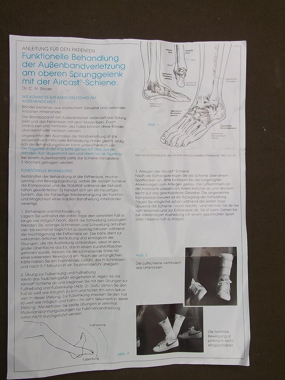 Erfreut Funktionelle Anatomie Des Verdauungssystems übung 25 Ideen ...