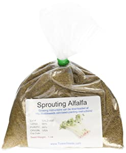 Chemical Free Alfalfa Sprout Seeds -1 Lb- Seeds For: Salad Sprouts & Sprouting - Can Be Grown in Any Sprouter