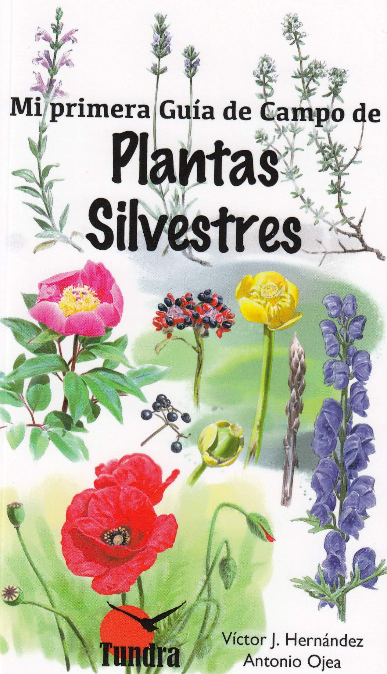 Mi primera guia de campo de plantas silvestres: Amazon.es: Hernandez Victor, Hernandez Victor: Libros