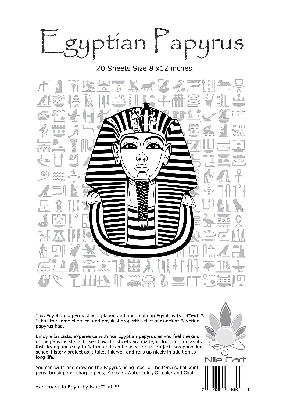/égyptien Paparyus Feuilles blanches 8/X12/en /égyptien avec pochoir R/ègle et signets faite /à la main en /Égypte Pack of 20 Blank Sheets beige