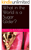 What in the World is a Sugar Glider?